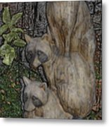 Three Raccoons Metal Print