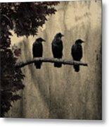 Three Ravens Branch Out Metal Print