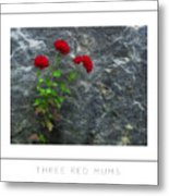 Three Red Mums Poster Metal Print