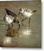 Three Together Metal Print