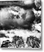 Three Tree Tops Landscape Metal Print