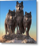 Three Wolves Watching You Metal Print