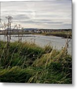 Thriving Under The Wind. Metal Print