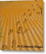 Through Desert Metal Print