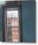 Through The Bars She Saw Her Freedom Metal Print