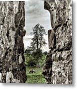 Through The Castle Window Metal Print