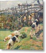 Through The Fence Metal Print by Arthur Charles Dodd