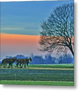 Through The Fields Metal Print