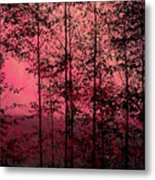 Through The Forest, Rose Metal Print