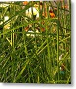 Through The Grass Curtain Metal Print