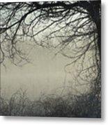 Through The Mist Metal Print