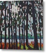 Through The Opinicon Forest Metal Print