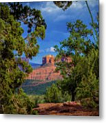 Through The Pines Metal Print
