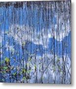 Through The Reeds Metal Print