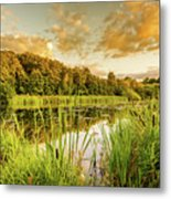 Through The Reeds Metal Print