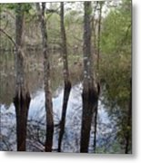 Through The Trees And To The River Metal Print