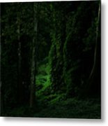 Through The Woods Dark And Deep Metal Print