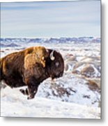Thunder In The Snow Metal Print