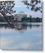 Tidal Basin Blossoms - Jefferson Memorial Metal Print