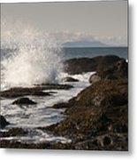 Tide Pool Wave Metal Print