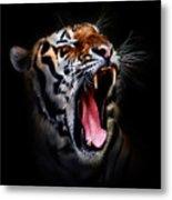 Tiger 10 Metal Print