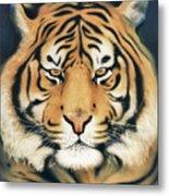 Tiger At Midnight Metal Print