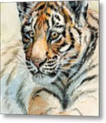 Tiger Cub Portrait 865 Metal Print