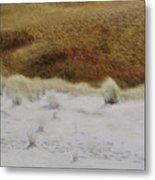 Tiger Dune Metal Print