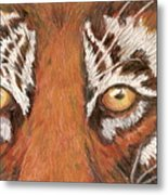 Tiger Eyes 2 Metal Print