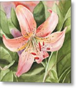 Tiger Lily Watercolor By Irina Sztukowski Metal Print