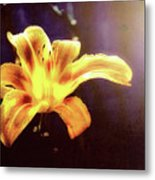 Tiger Lily On Waters Edge Metal Print