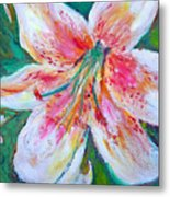 Tiger Lily Passion Metal Print
