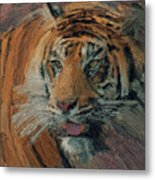 Tiger On Hunting Metal Print