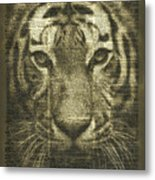 Tiger Over Dictionary Page Metal Print