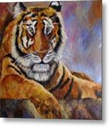 Tiger Resting Metal Print