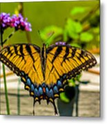 Tiger Swallowtail Butterfly By Fence Metal Print