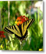 Tiger Tail Beauty Metal Print