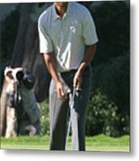 Tiger Woods P Metal Print
