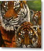 Tigers Family Oil Painting Metal Print