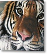 Tigger Metal Print by Barbara Keith