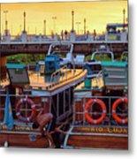 Tigre Delta 017 Metal Print