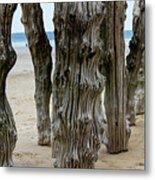 Timber Textures Lv Metal Print