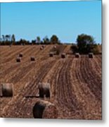 Time To Bale In Color Metal Print