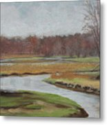 Timm's Meadow Metal Print