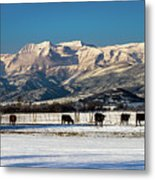 Timpanogos From The North Fields Metal Print