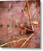 Tin Door - Red Pond Metal Print
