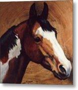 Tingeys Fancy   Paint Horse Metal Print
