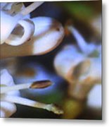 Tiny Flowers Metal Print