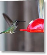 Tiny Flying Machine Metal Print