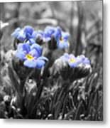 Tiny Gems Metal Print